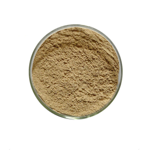 Litchi chinensis Extract